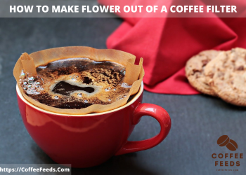 How to make Flower out of a Coffee Filter